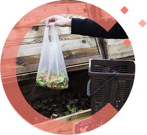 végéos sacs biosourcés sacs biodégradables et compostables en compostage domestique 2