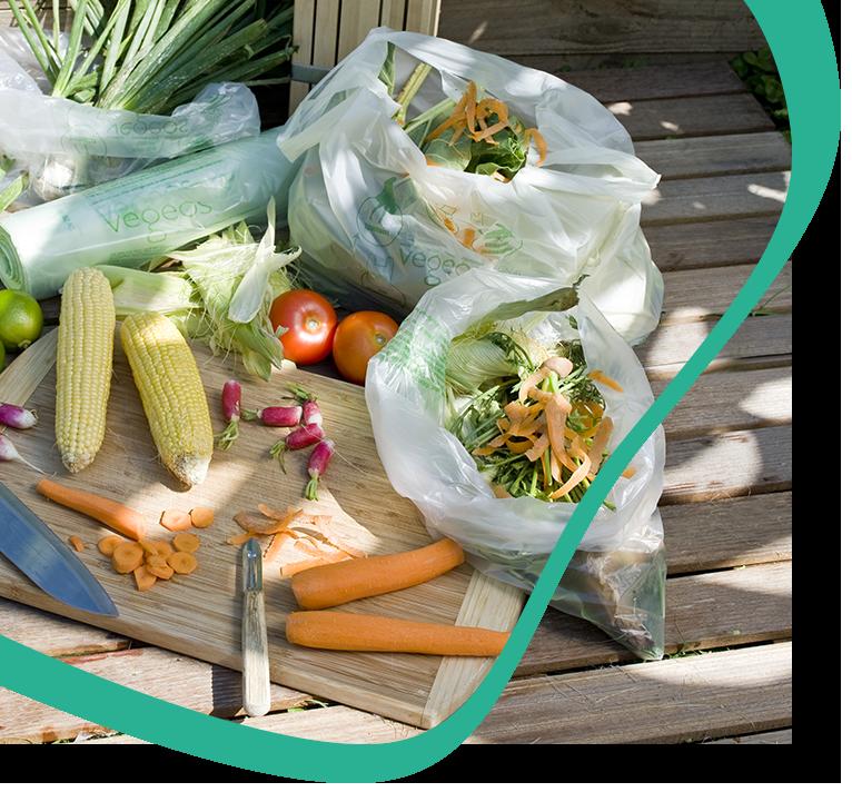 végéos sacs biosourcés sacs biodégradables et compostables composteur